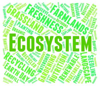 Ecosystem Word Indicates Earth Environmentally And Biospheres