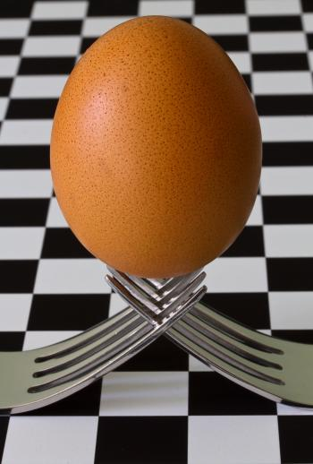 Egg on 2 Forks