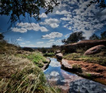 Enchanted Rock Stream