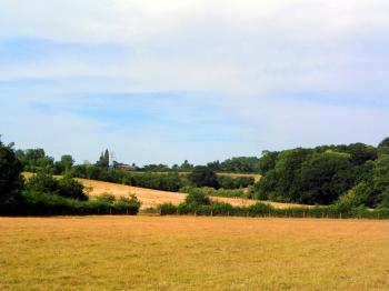 English Countryside - Suffolk