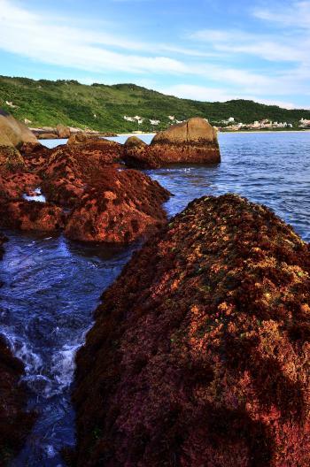Entre las rocas de Praia Brava