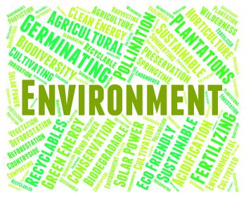 Environment Word Shows Earth Friendly And Eco-Friendly