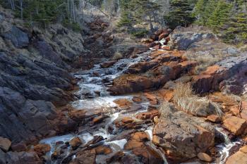 Environmental river damage