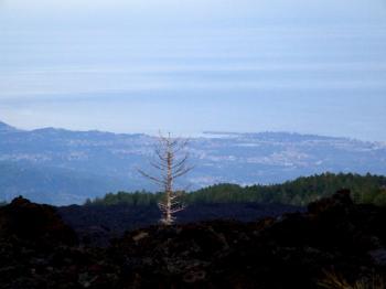 Etna-Volcano-Sicily-Italy - Creative Commons by gnuckx