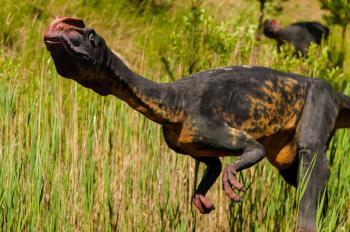 Extinct Animal Park