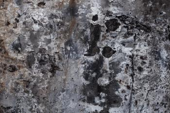 Ghostly Grunge Wall