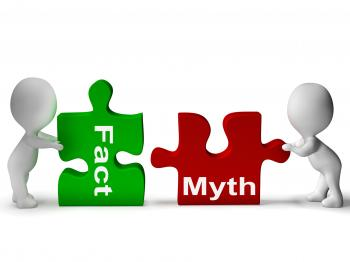 Fact Myth Puzzle Shows Facts Or Mythology
