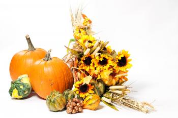 Fall cornucopia on a White background