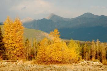 Fall Foliage with Mountains