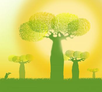 Fingerprints on Baobab Trees