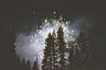 Fireworks in the Woods