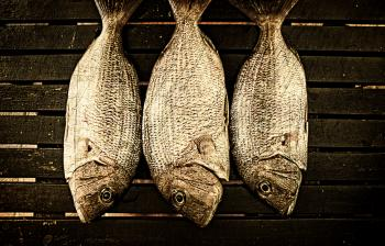 Fish ready to smoke on wood background