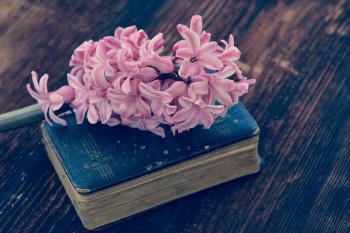 Flower n Book