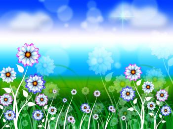 Flowers Background Means Blossoms Petals And Blooming