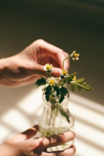Flowers in the Jar