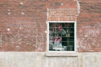 Flowers inside the window