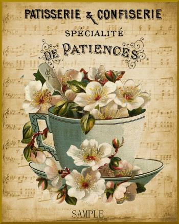 Flowers of Paris