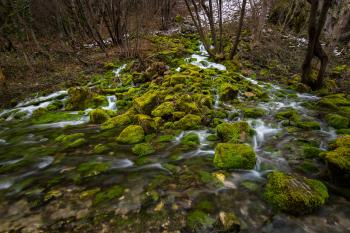 Flowing River and Moss Covered Rocks