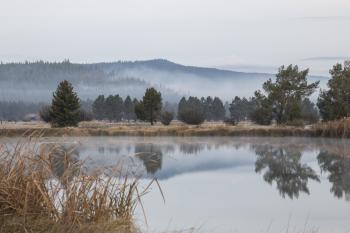 Fog at Sun River, Oregon
