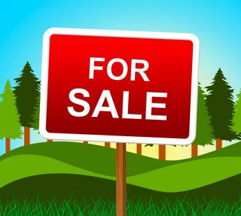 For Sale Represents Real Estate And Buy