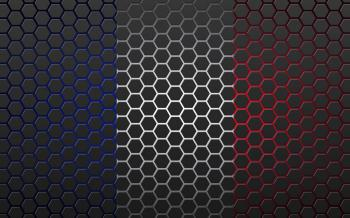 France flag in hex