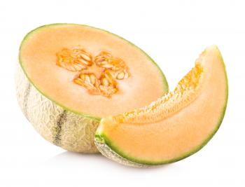 Fresh Melon Slice