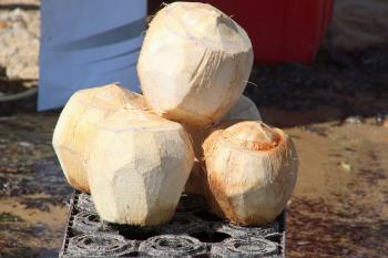 Fresh natural coconut drink