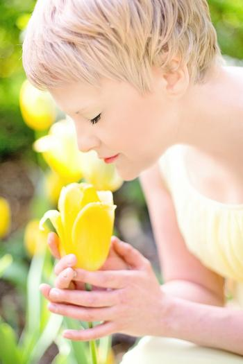 Fresh Tulip Garden