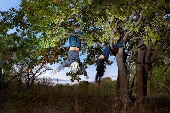 Friends On Tree