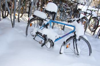 Frozen Cycle Stand