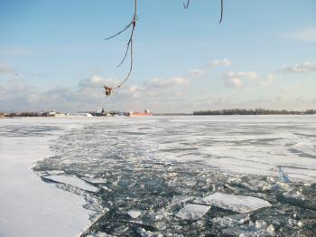 Frozen Toronto harbour, 2018 01 17 -ad