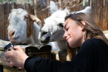 Funny girl takes a cute selfie with a goat on a farm