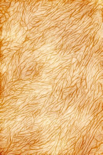 Furry Grunge Texture