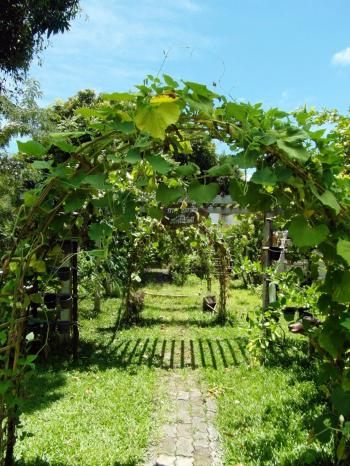 Garden Path Archway