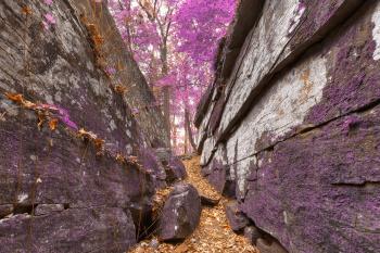 Gettysburg Grotto - Lavender Fantasy HDR