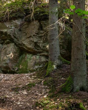 Giant boulder in Gullmarsskogen ravine