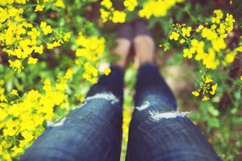 Girl standing in yellow flowers