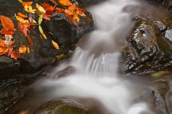 Glen Artney Stream - HDR