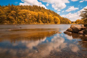 Gold Hudson River