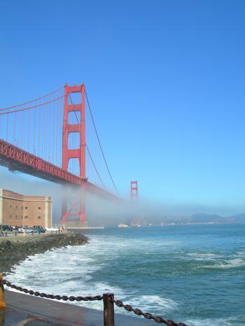 Golden Gate Fog Vertical