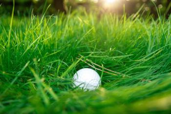 Golf ball in high grass