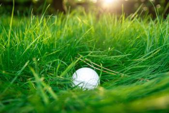 Golf ball in high grass