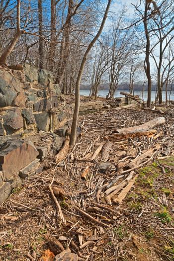 Goose Creek Shore - HDR