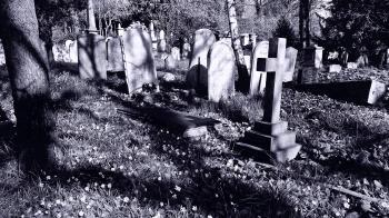Grave & Memorial Stones~Cemetery