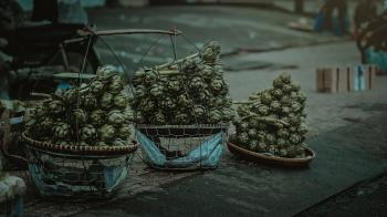 Gray Nuts With Three Baskets on Gray Table