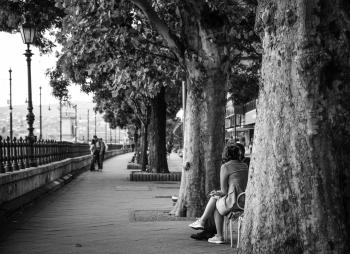 Gray Scale Photo of Woman Sitting Down in Chair Near Trees