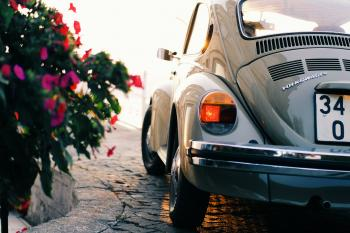 Gray Volkswagen Beetle Near Pink Flowers