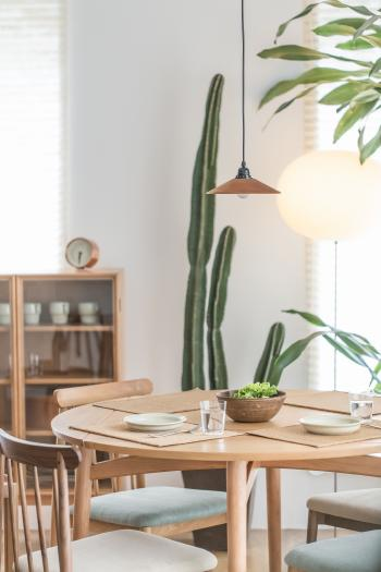 Green Cactus Plant Near to White Ceramic Plate on Brown Wooden Table