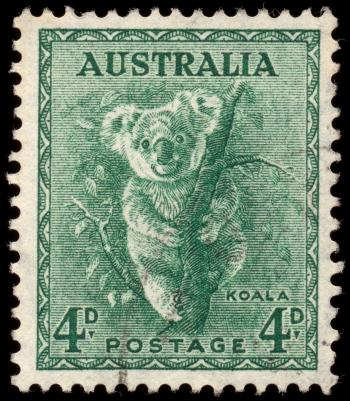 Green Koala Stamp