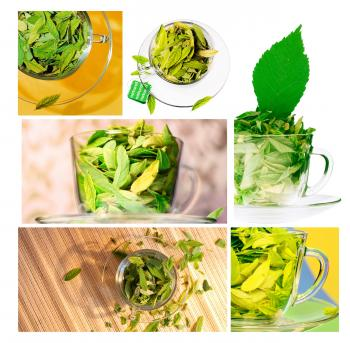 Green leaves in cups